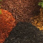 Mulch Mix