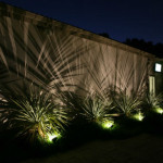 landscape-lighting-plants1